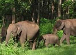 Kane Wildlife Sanctuary